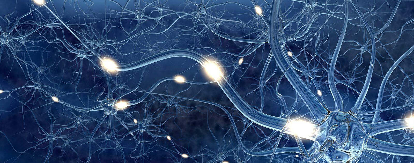 Darstellung einer Nervenzelle mit vergrößerter Synapse und vergrößertem Ausschnitt des Axons
