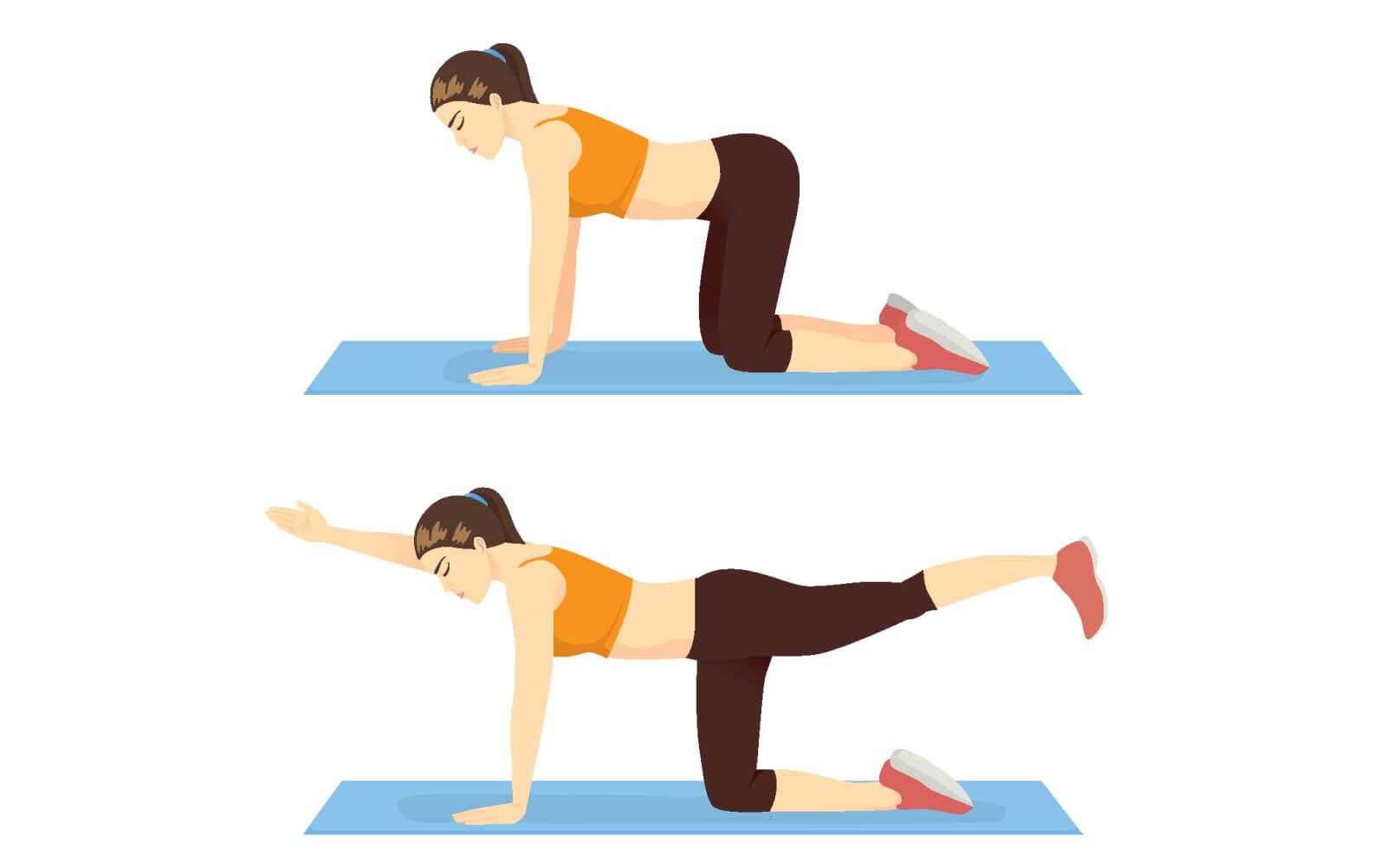 Junge Frau macht eine Pilates-Übung gegen Rückenschmerzen aus dem Vierfüßlerstand heraus.
